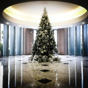 commercial-holiday-decor-san-diego-2017-20