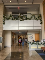 commercial-holiday-decor-san-diego-2017-17