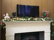 commercial-holiday-decor-san-diego-2017-29