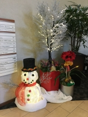 commercial-holiday-decor-san-diego-2017-3