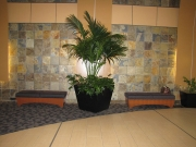 commercial-interior-landscape-2