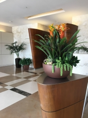 interior-plantscape-plants-for-businesses-san-diego-1