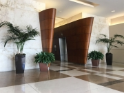 interior-plantscape-plants-for-businesses-san-diego-3