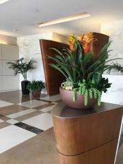 interior-plantscape-plants-for-businesses-san-diego-1