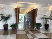 interior-plantscape-plants-for-businesses-san-diego-2