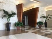 interior-plantscape-plants-for-businesses-san-diego-3