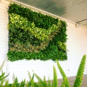 Living-Green-Walls-San-Diego-2019-1