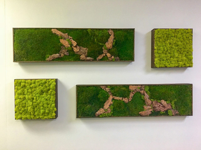 Moss wall art roselawnlutheran Wall pictures