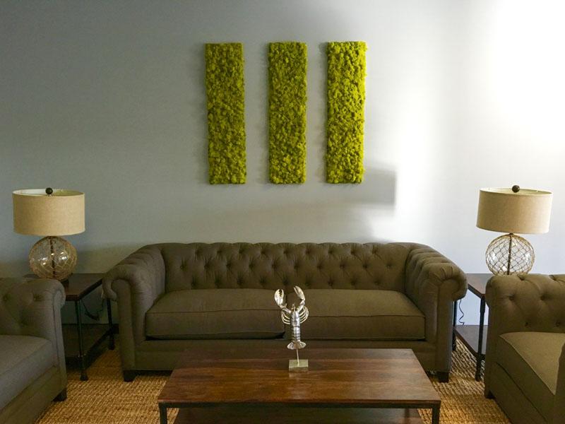 Moss Wall Art Gallery San Diego