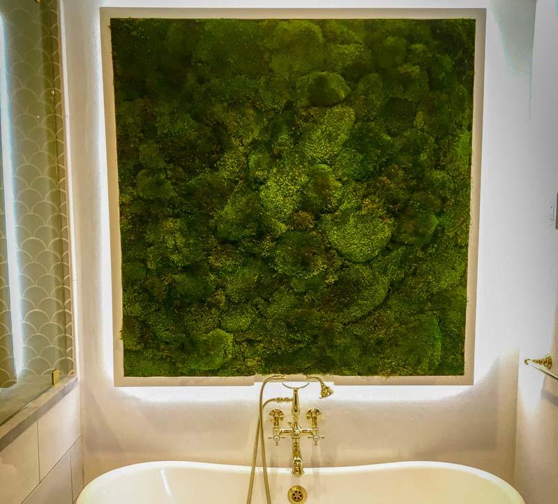 Evergreen Interiors Inc