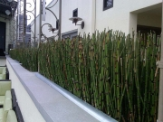 marriott-rooftop-garden-patio
