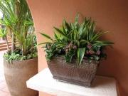 patio-landscape-san-diego-1