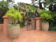 patio-landscaping-san-diego-2