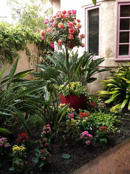 Patio Landscaping San Diego To Temecula By Evergreen Interiors Inc