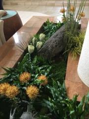interior-plantscape-plants-for-homes-san-diego-18-5