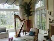 music_room-interior-landscape