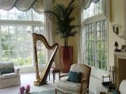 music_room-interior-landscape