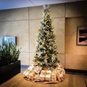 commercial-holiday-decor-san-diego-2017-21