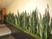 planter-after-landscape