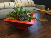 interior-plantscape-plants-for-homes-san-diego-18-1
